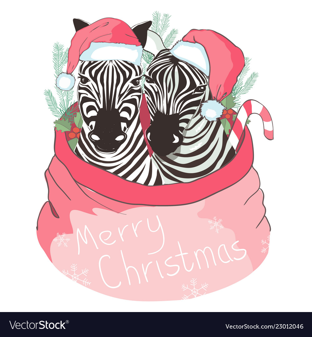 ff20bd982fa92 Graphical zebra in santa claus hat isolated on Vector Image