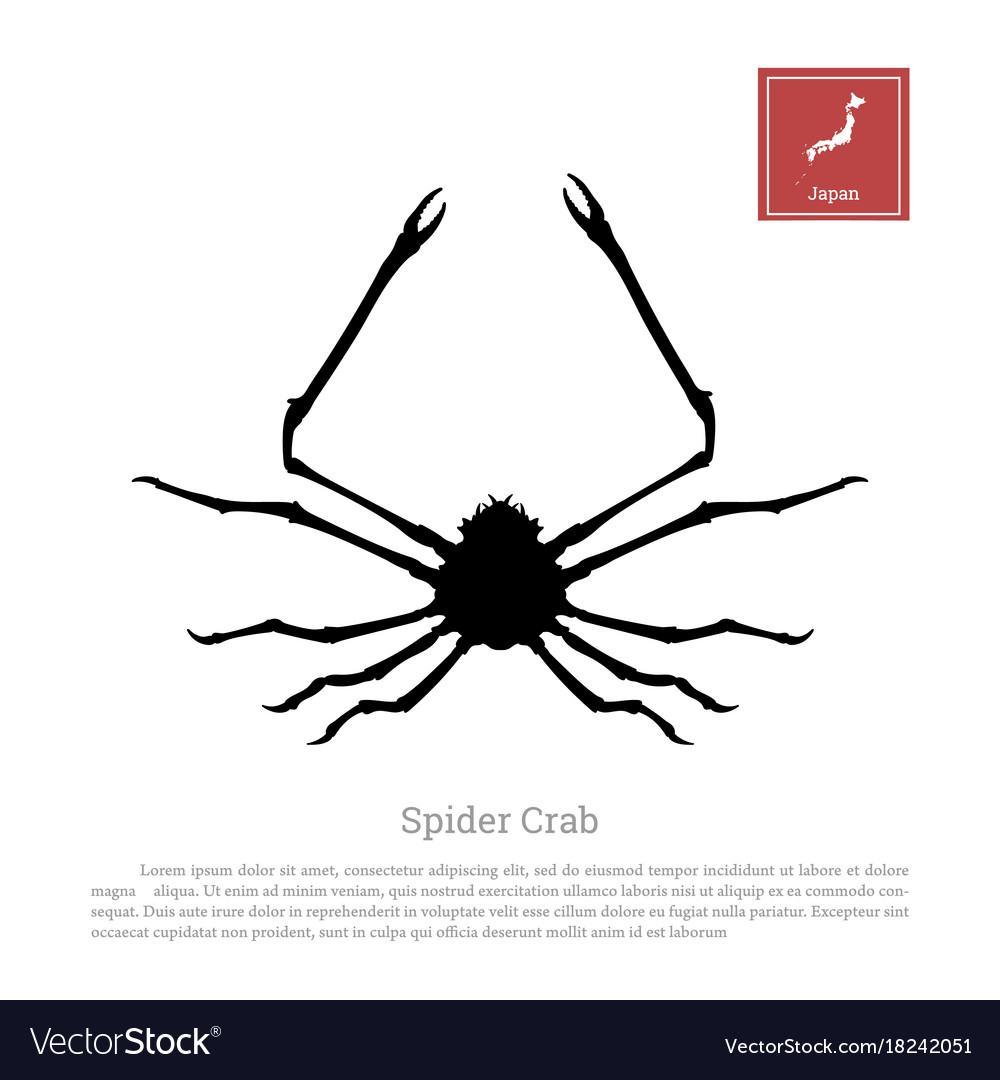 Black silhouette of a japanese spider crab