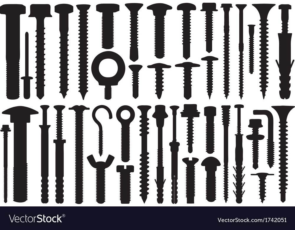 Set of different screws vector image