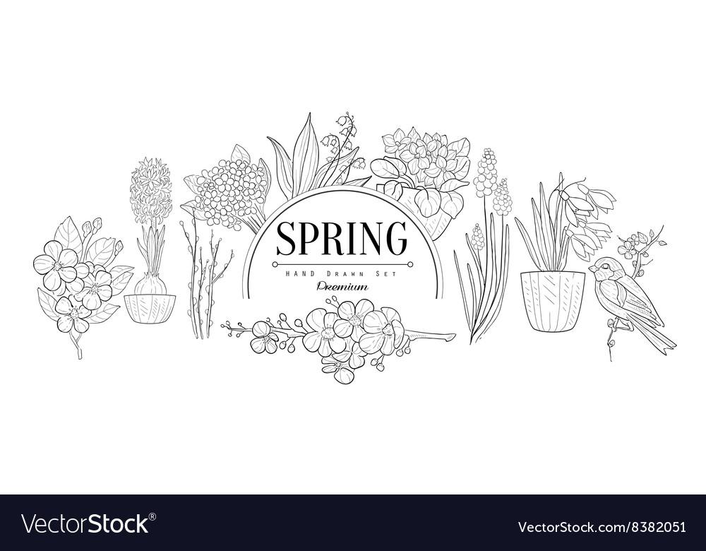 Spring Set Vintage Sketch