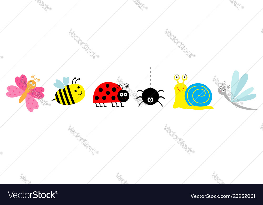 Ladybug ladybird bee dragonfly butterfly spider