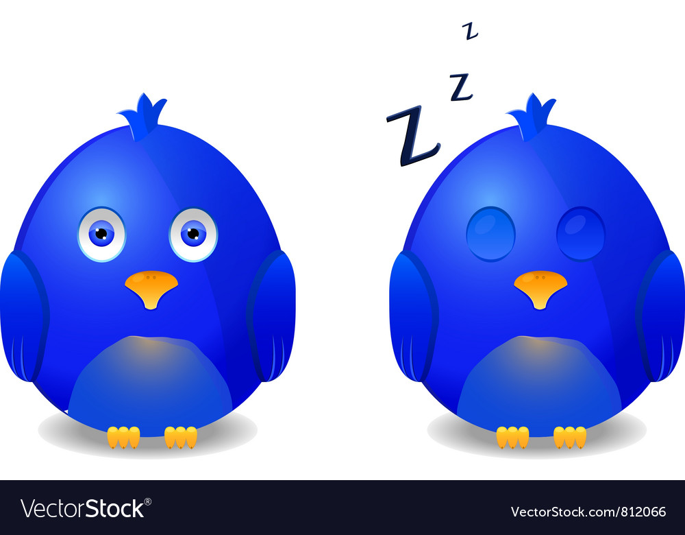 Blue awake and sleeping bird