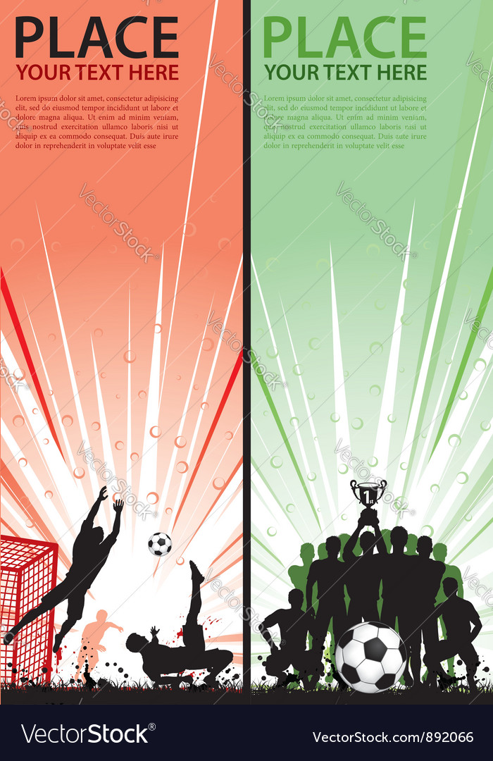 Collect sport Flyer vector image