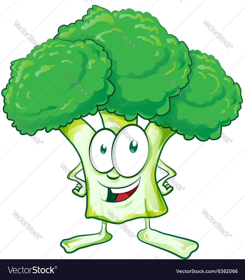 Fun broccoli cartoon vector image
