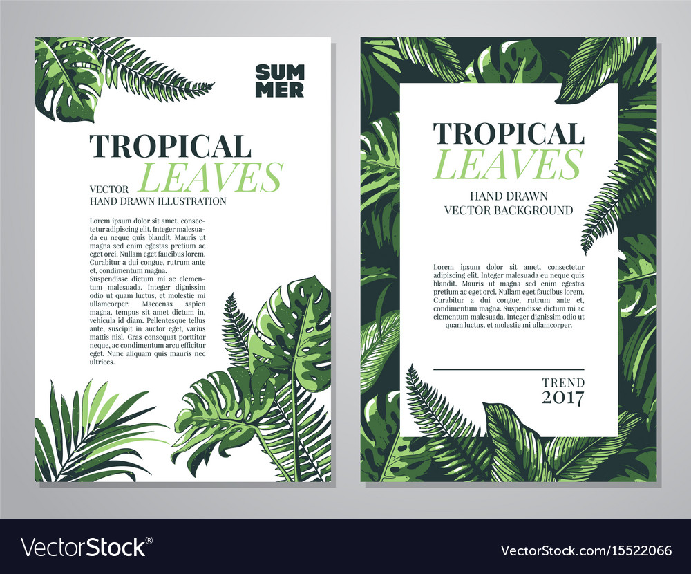 Tropical palm leaves background vector image