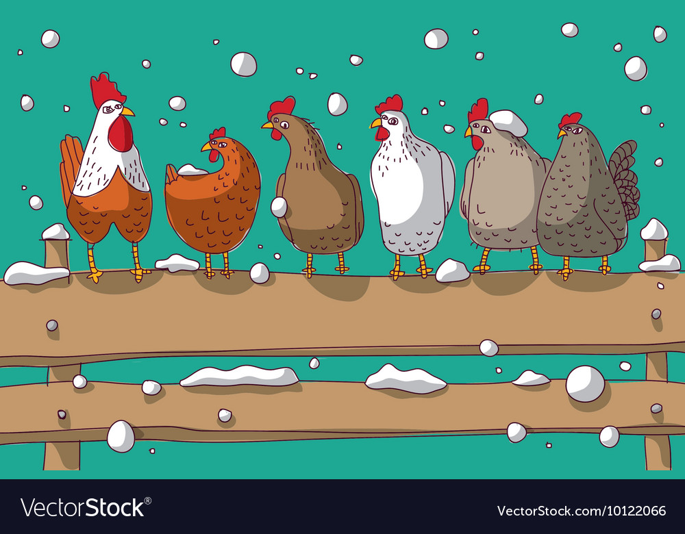 Winter group chicken snow and sky vector image