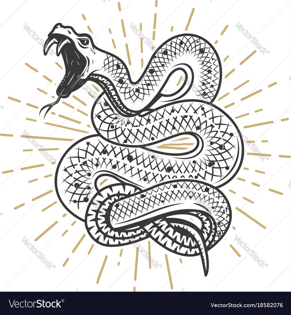 Viper snake on white background design element