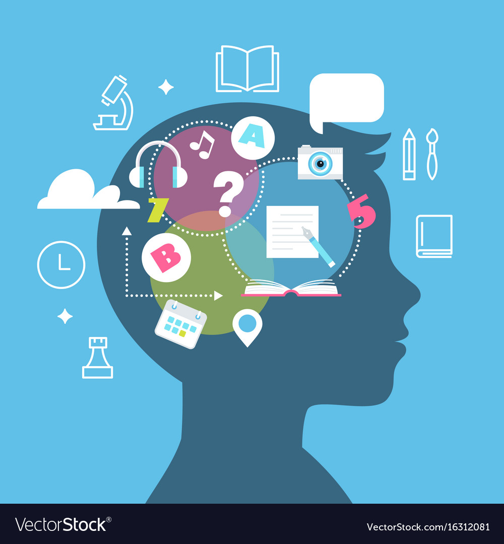 Education learning styles memory and learning vector image