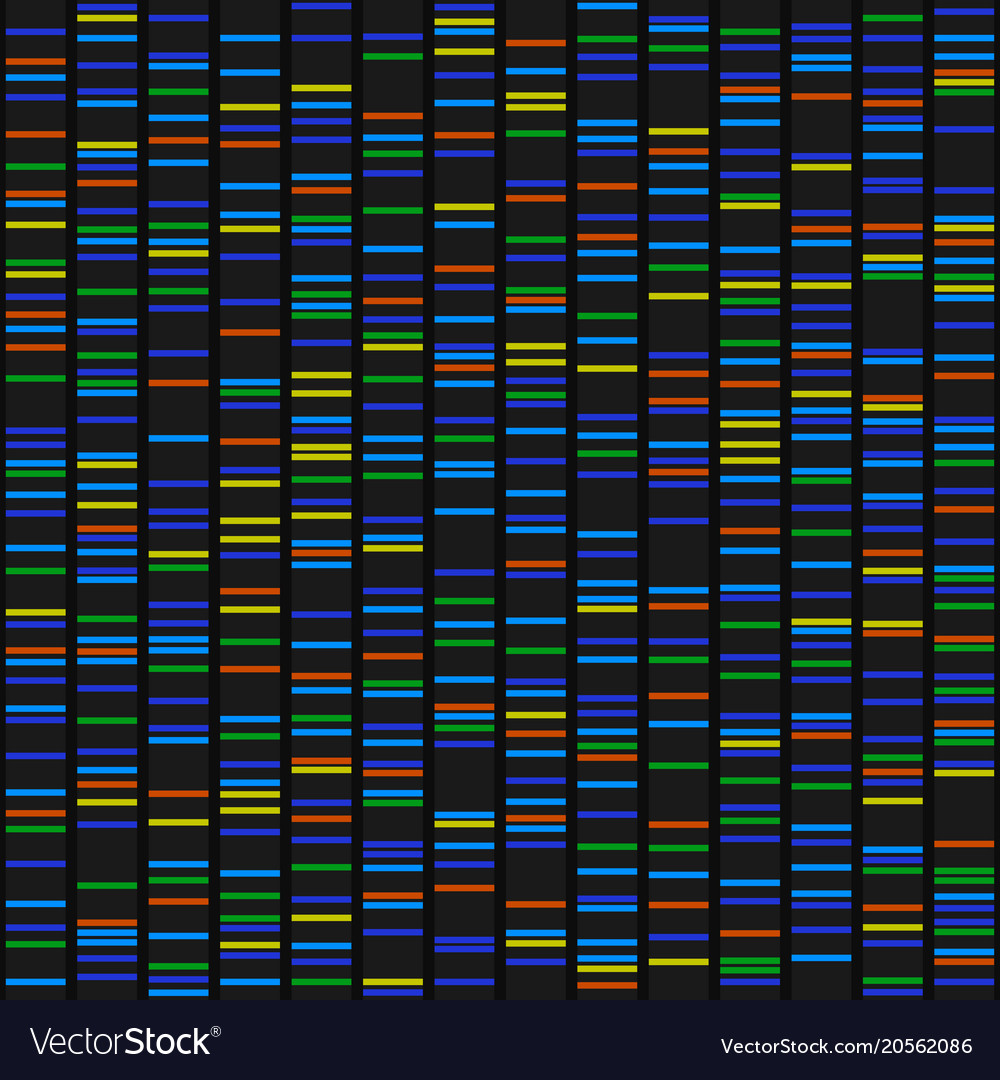 Color dna sequence results on black seamless vector image