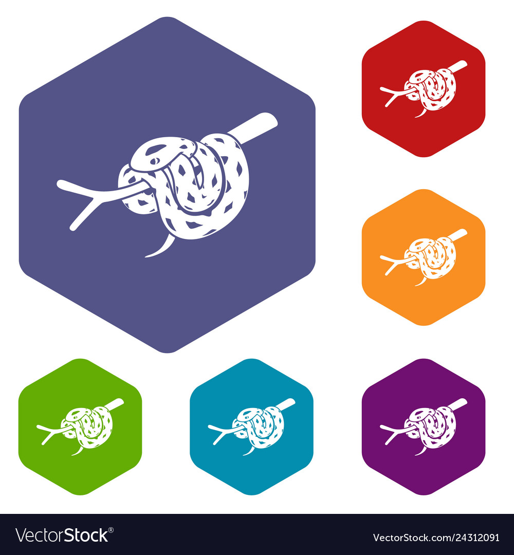 Bull snake icons hexahedron