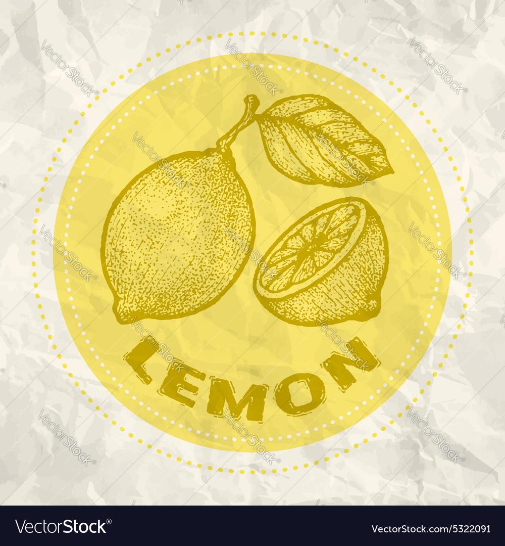 Lemon vintage paper vector image