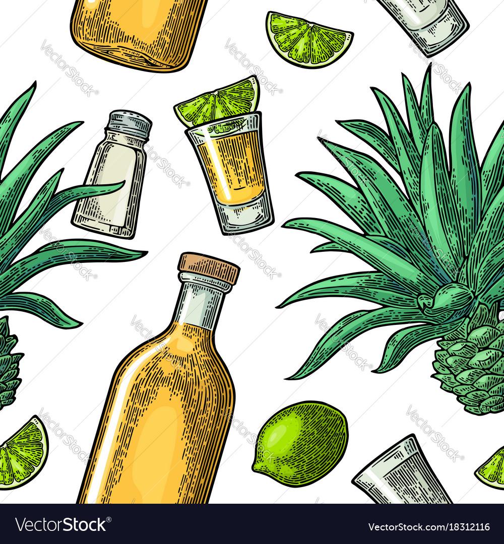 Seamless pattern of bottle glass tequila salt