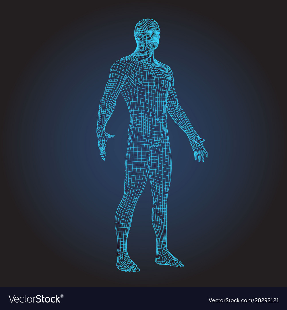 3d wire frame human body full face Royalty Free Vector Image