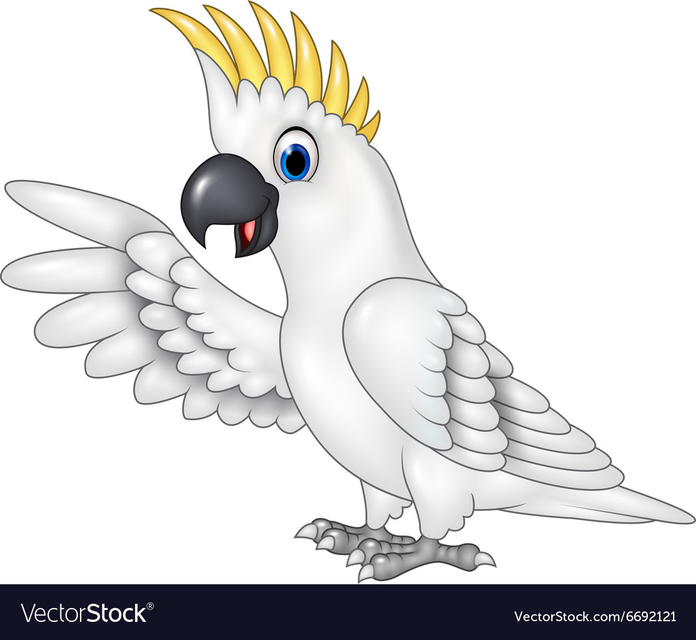 Cartoon funny white parrot presenting isolated