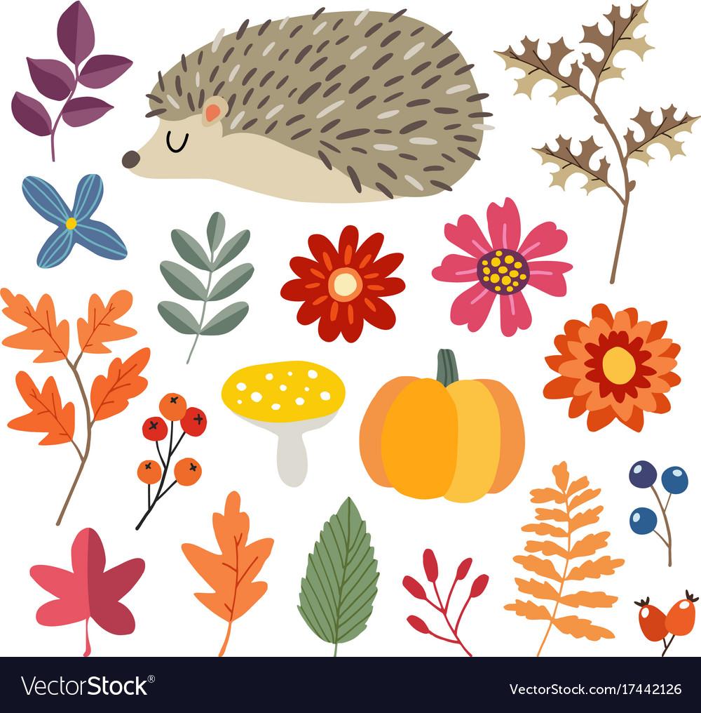 Set of cute hand-drawn autumn elements hedgehog