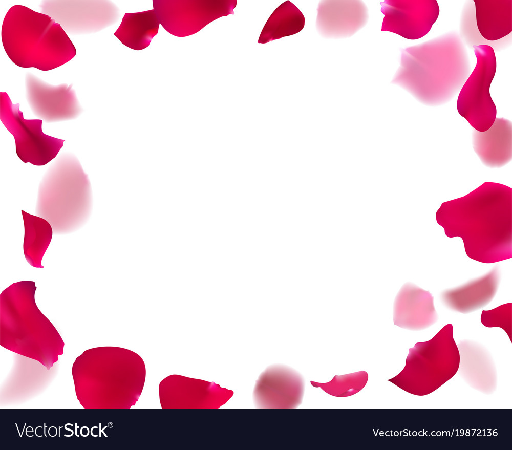 Rose Petal Template | Invitation Template With Rose Petals Royalty Free Vector