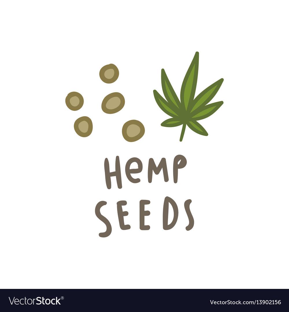 Hemp seeds superfood