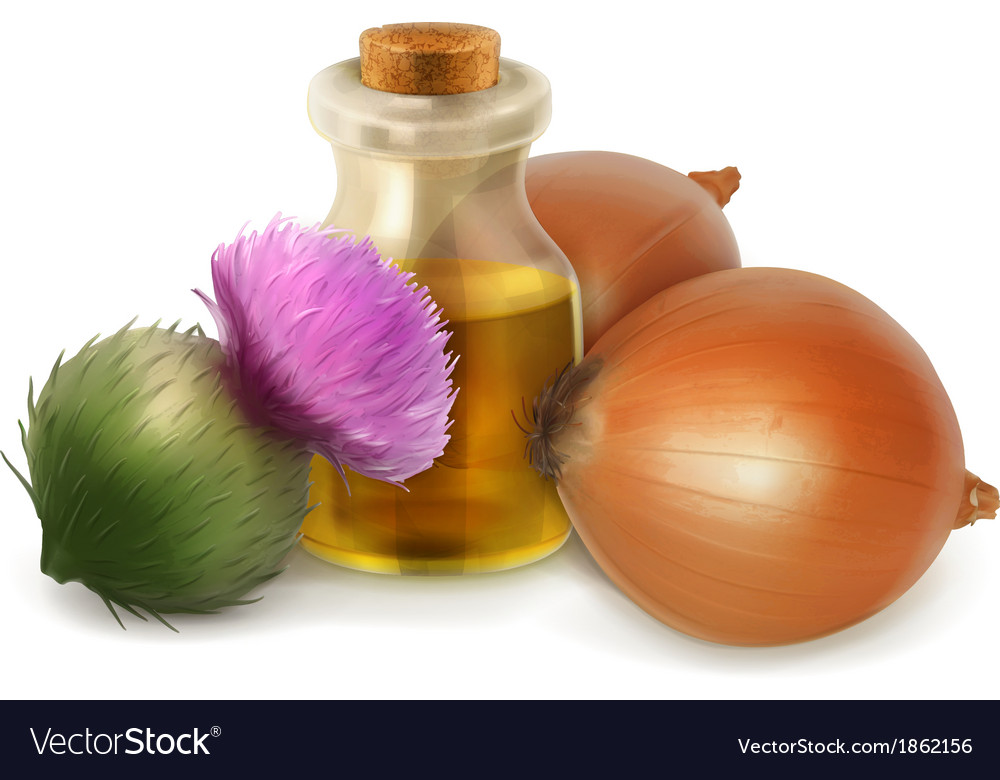 Onion and burdock folk medicine