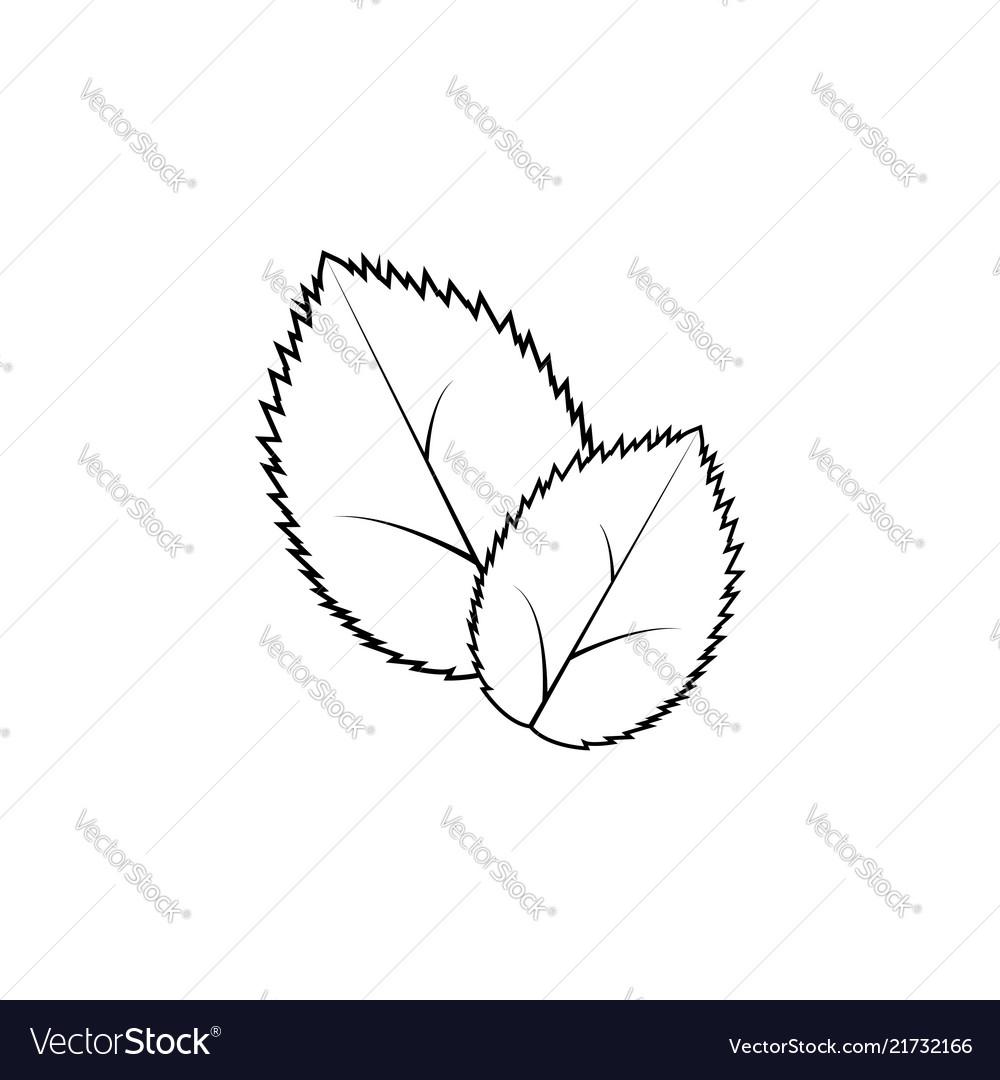 Leaf line icon black