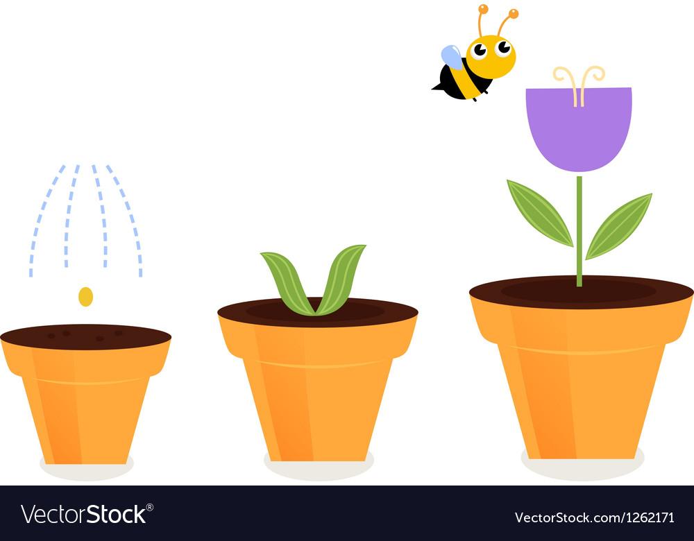 попытавшийся картинки семя росток цветок с бутоном цветок раскрылся успокаивает, направляет мышление