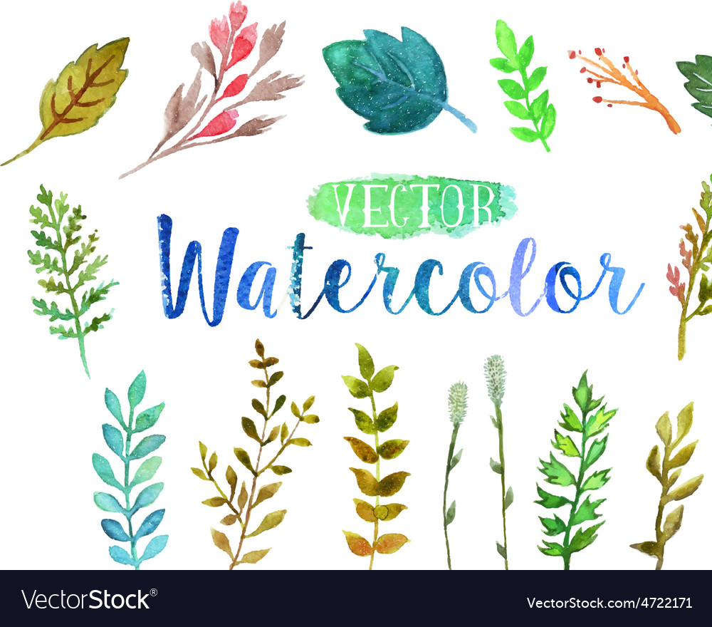 Watercolor aquarelle branches and leaves