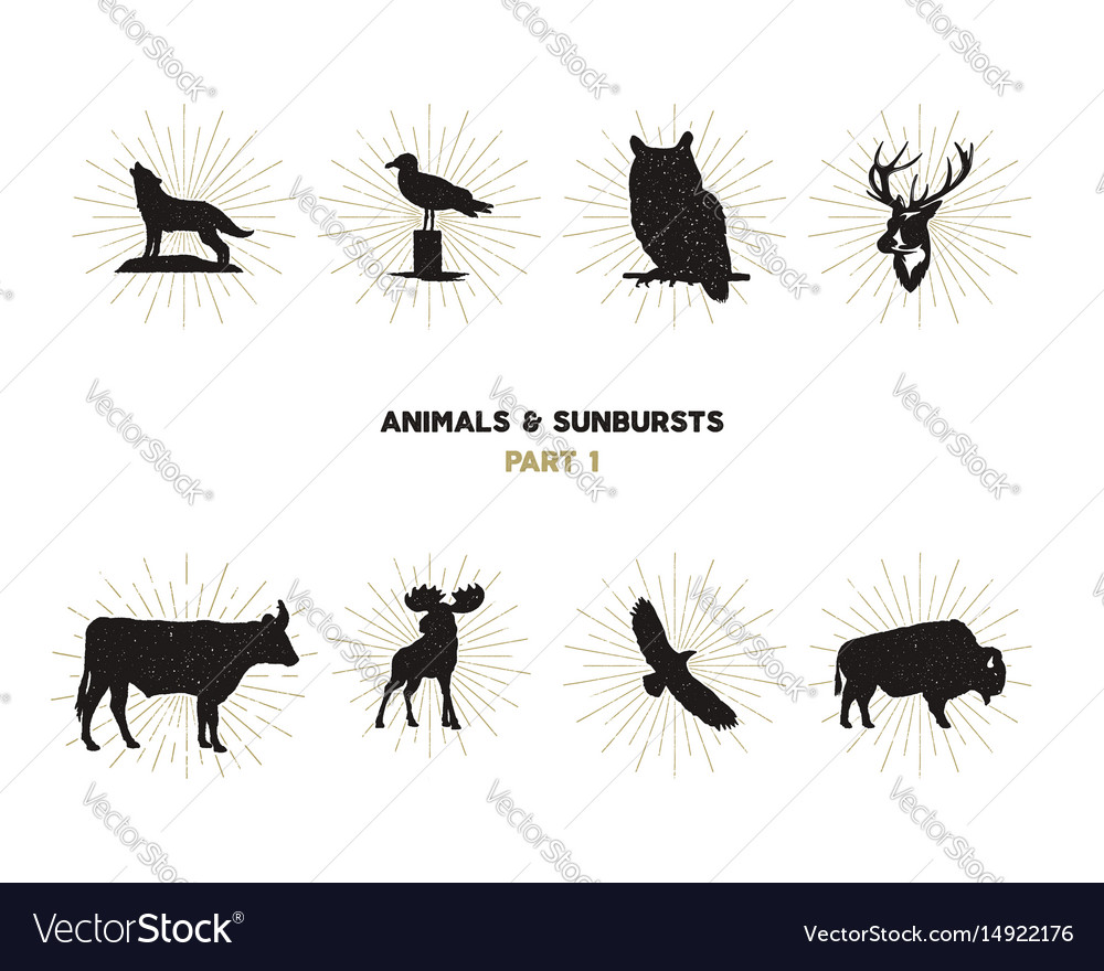 Set of wild animal figures and shapes with