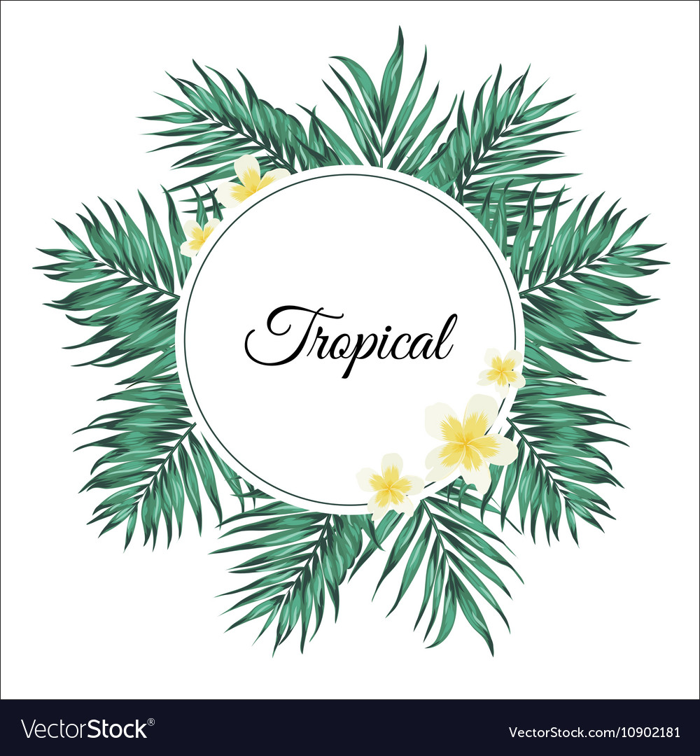 Tropical palm leaves and plumeria flowers frame