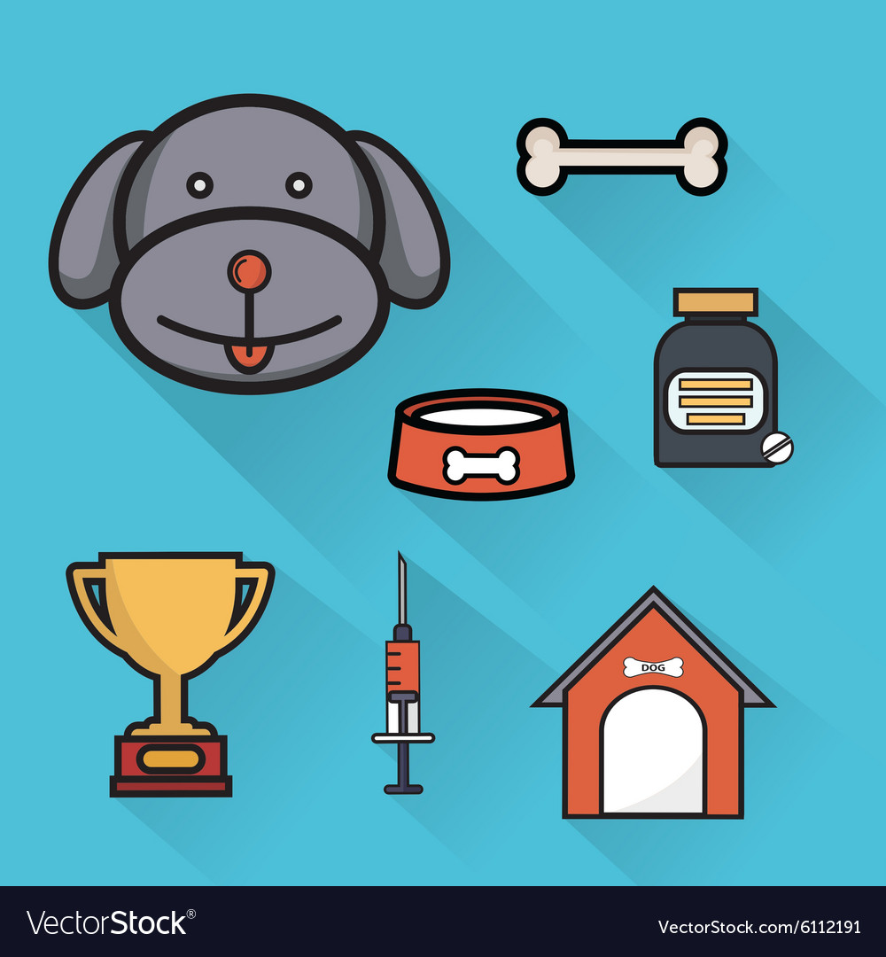 Pet care healthcare accessories flat icons