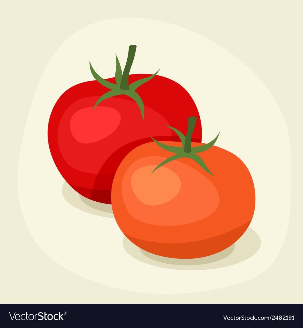 Stylized of fresh ripe tomatoes vector image