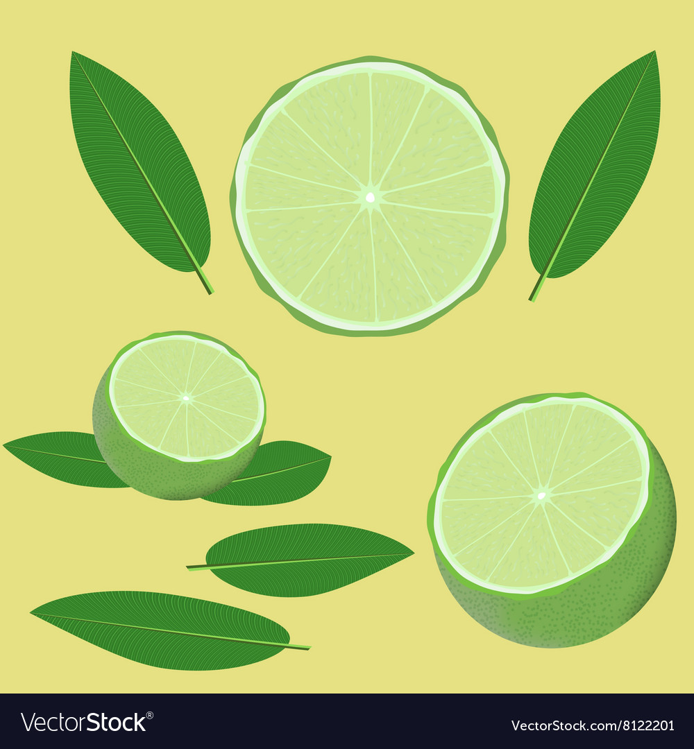 Lime and leaves