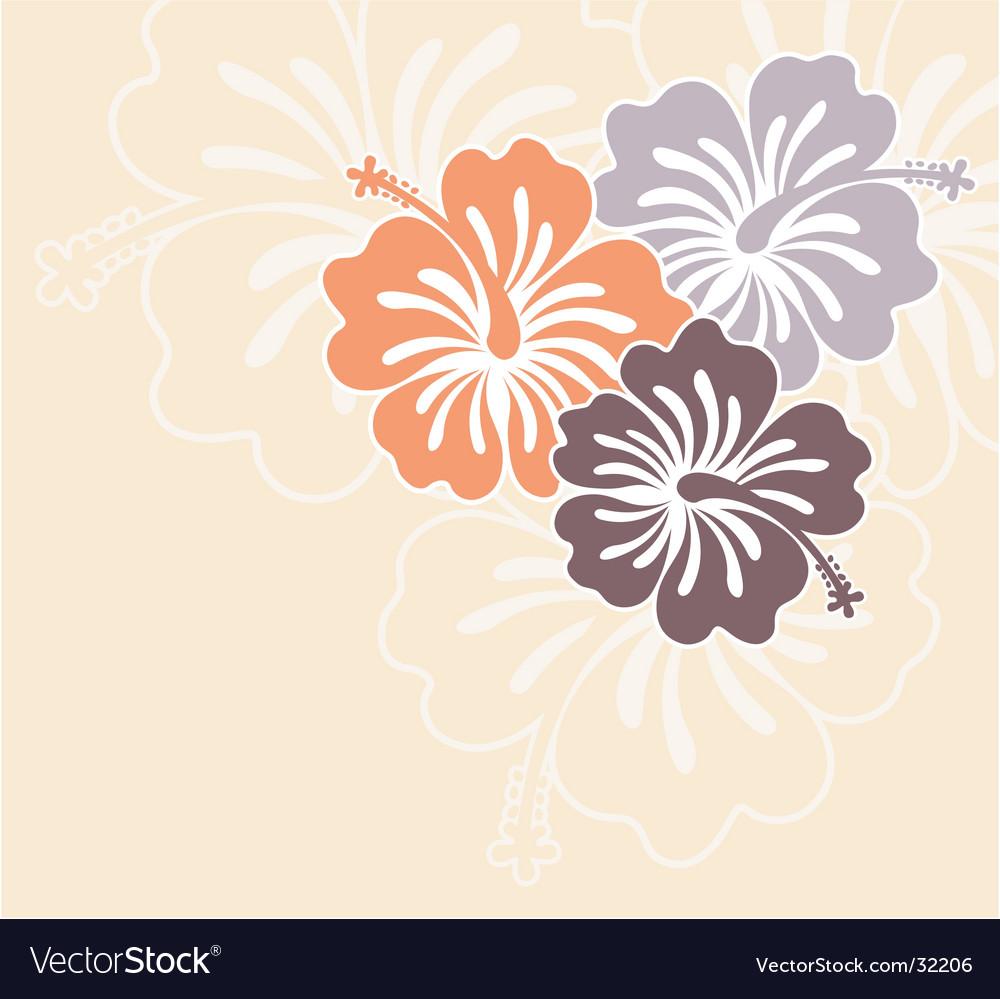 Honolulu flower vector image