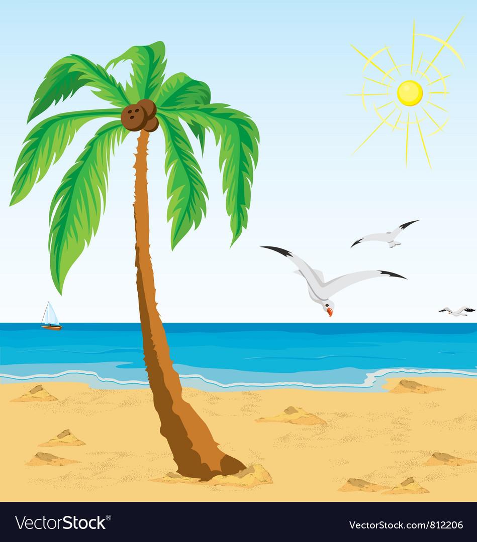 Palm Tree Beach: Palm Tree On Sand Beach Royalty Free Vector Image