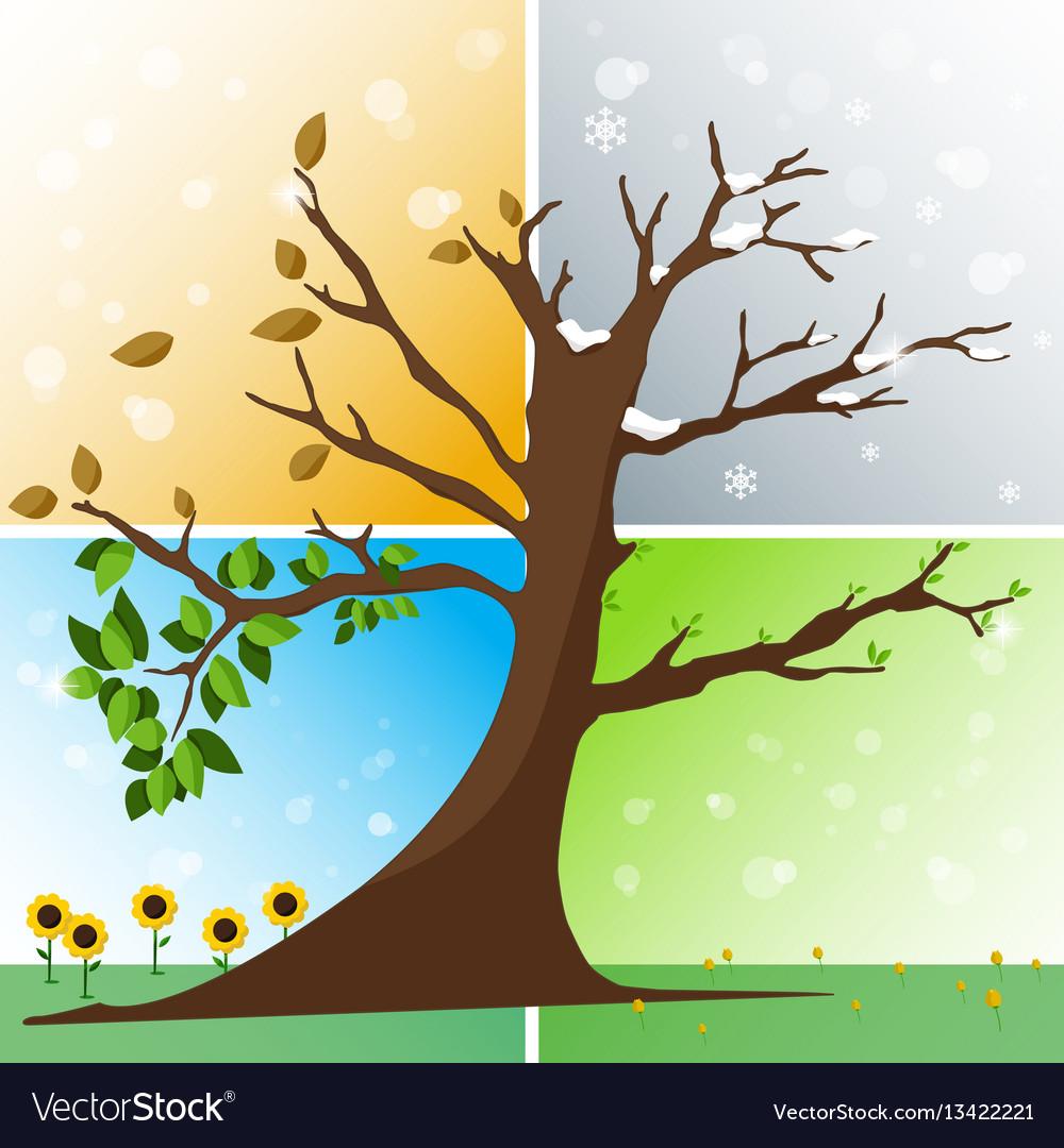 Four seasons in one tree