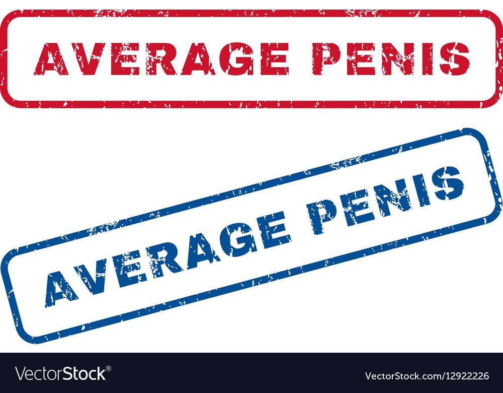 Average penis s