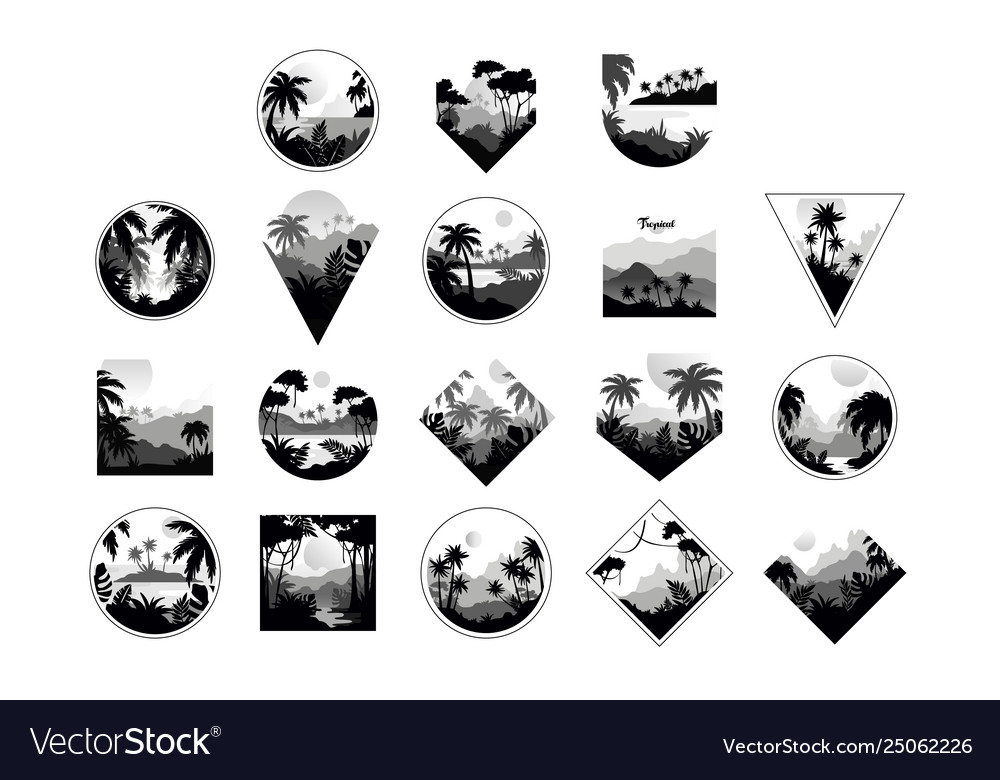 Collection monochrome geometric tropical logo