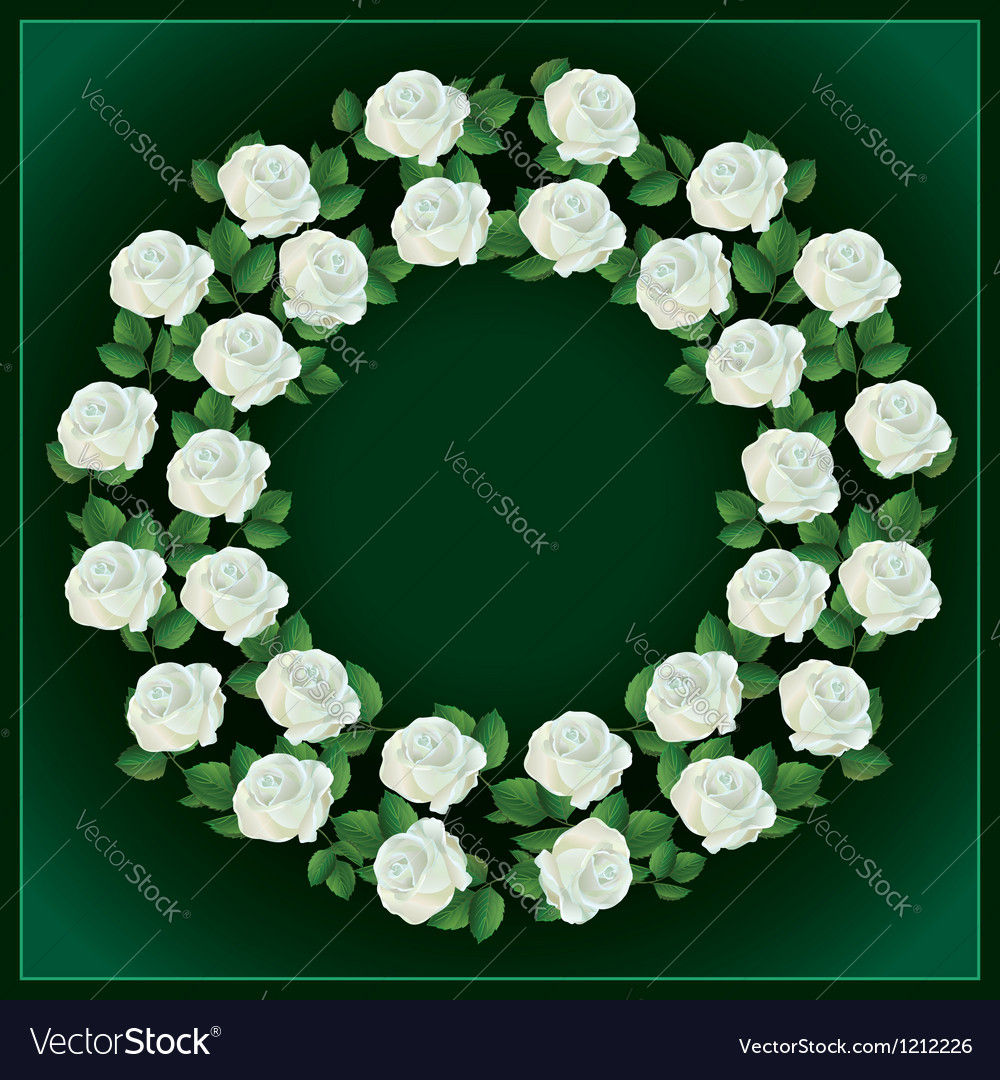 Ornament of white roses element for design