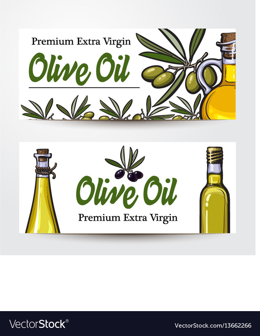 Banners with olive tree branches oil bottles and