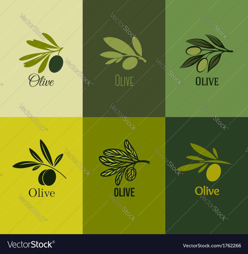 Olive branch Set of labels