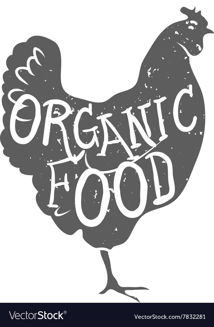 Hand Drawn Farm Animal Chicken Organioc Food Vector Image