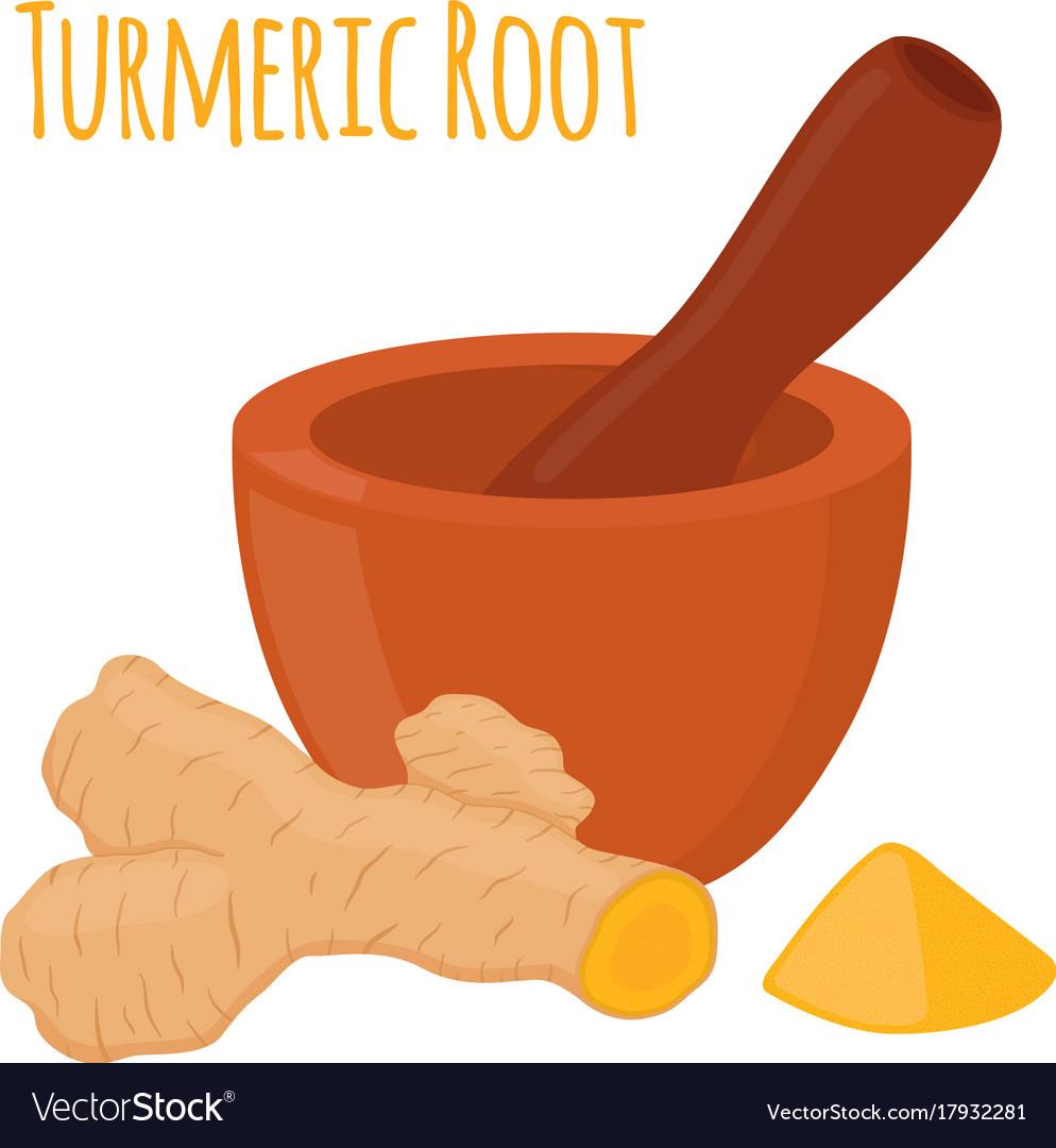 Turmeric root pestle mortar flat style vector image