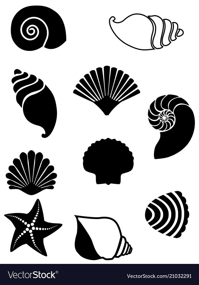 Set shells