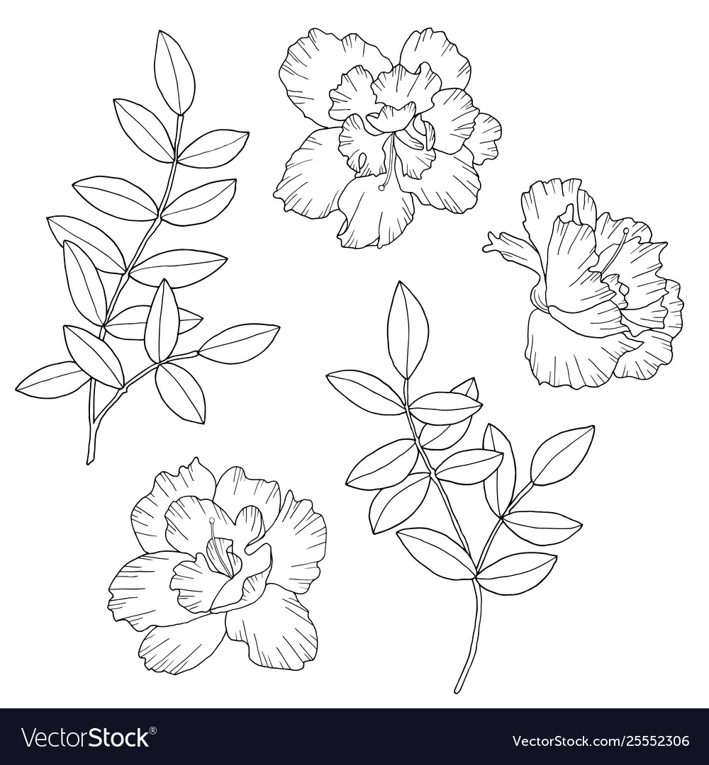 Abstract flowers and branches with leaves hand