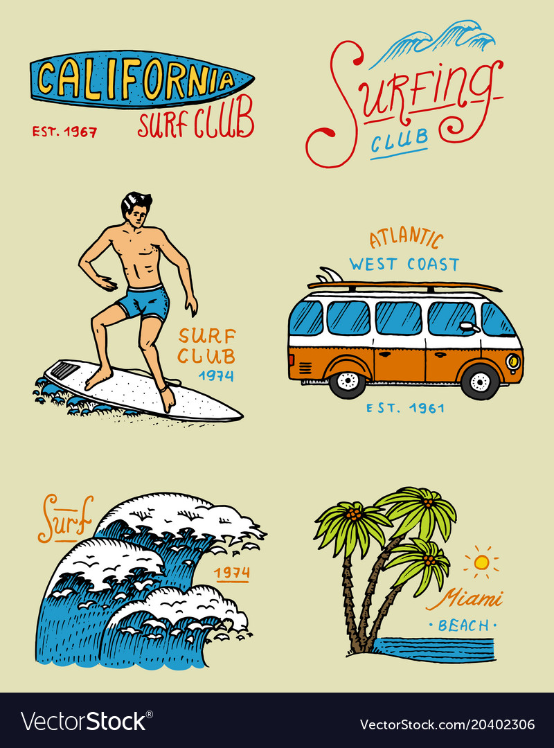 Surf badge and wave palm tree and ocean tropics
