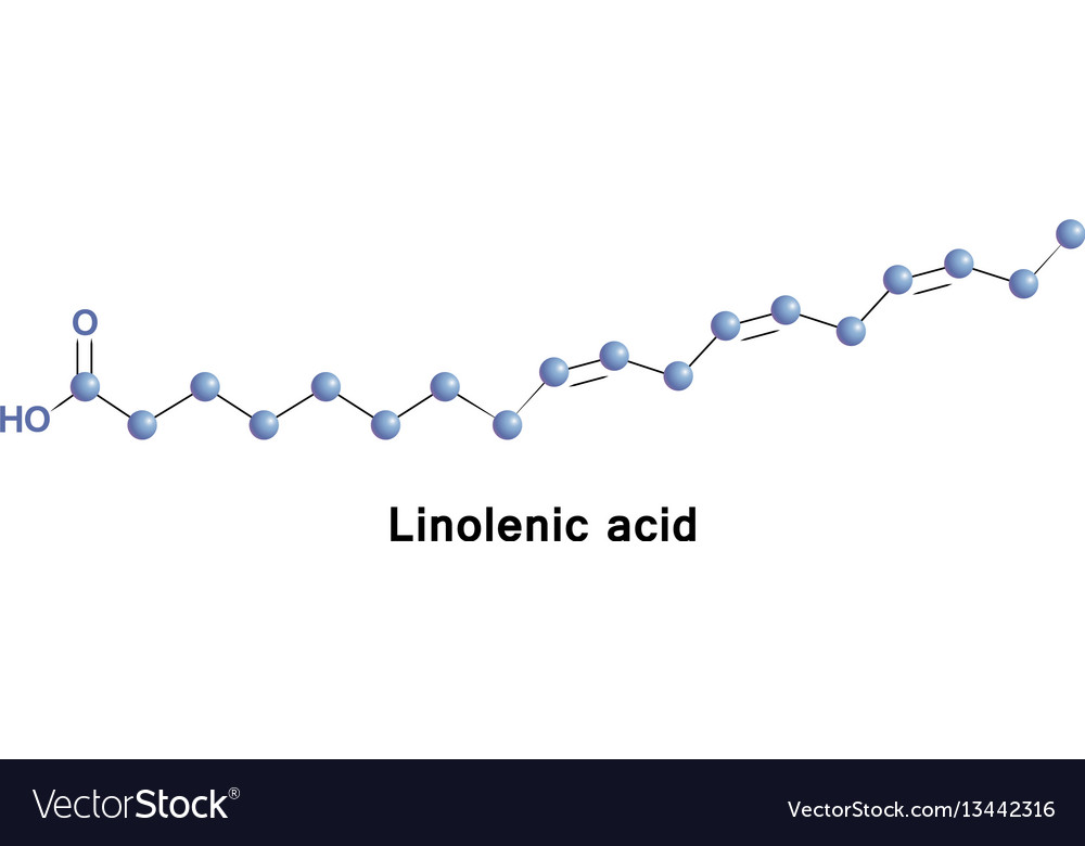 A linolenic is an omega 3 fatty acid vector image