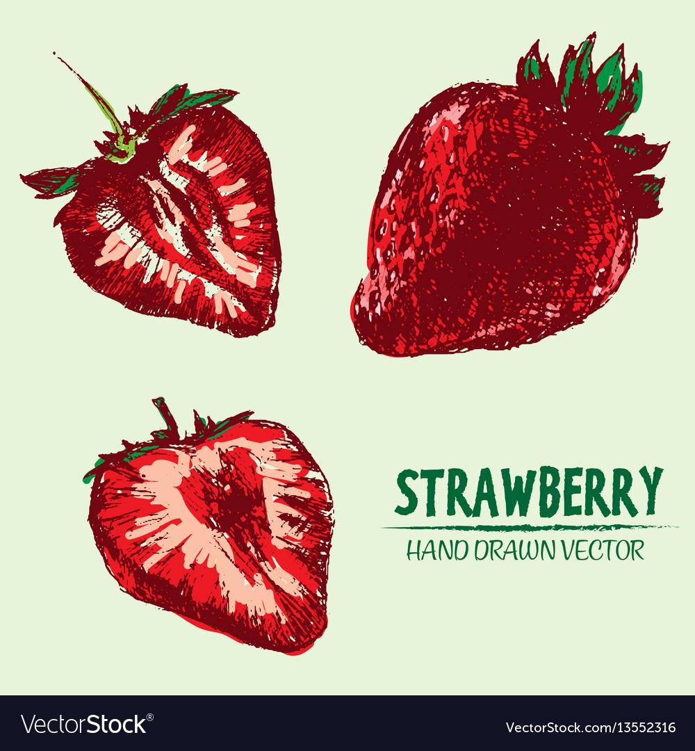 Digital detailed color strawberry