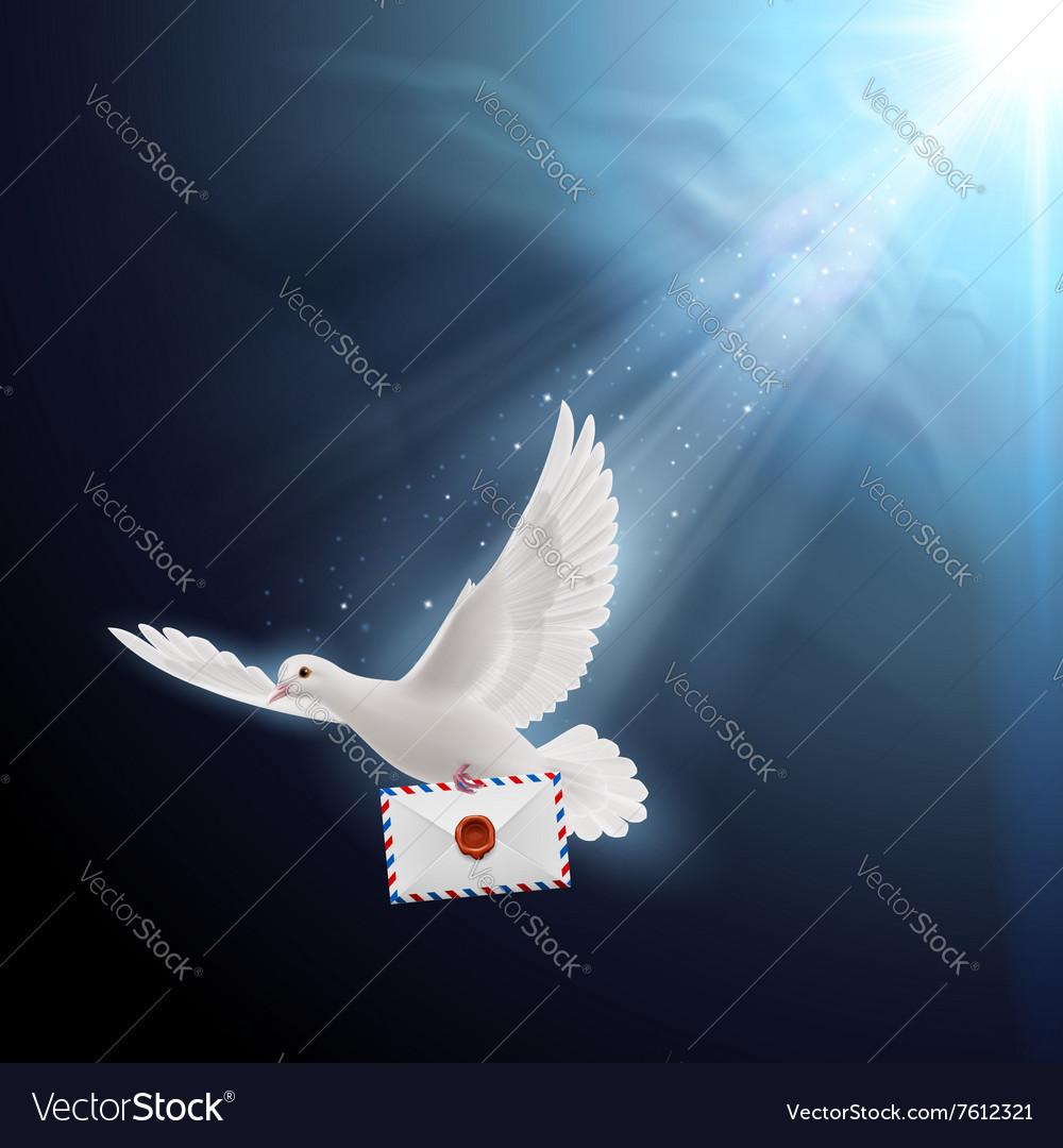 Открытка голубь с письмом, открытки конвертом раскраска