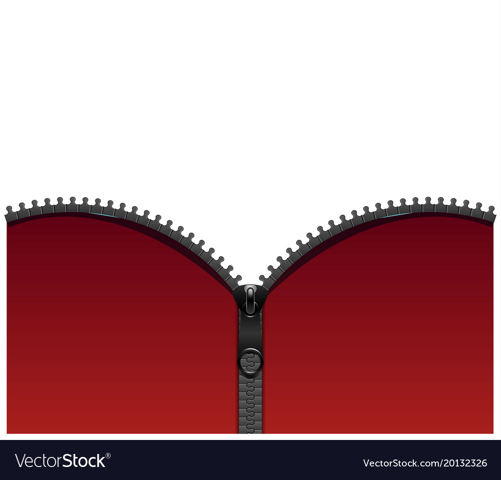 Background with metallic zipper vector image