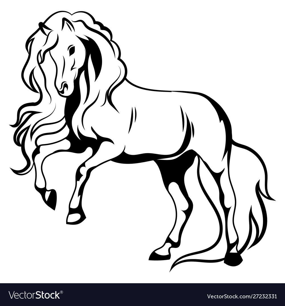 Wild Horse Black And White A Royalty Free Vector Image