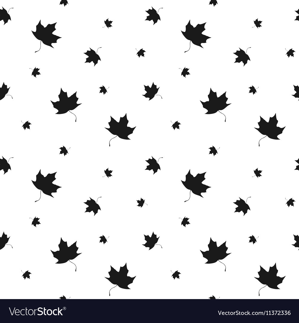 Black and white leaf maple seamless pattern