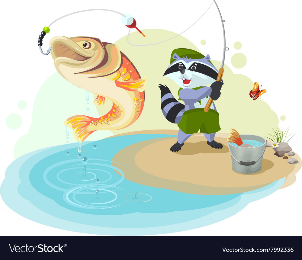 Raccoon scout fishing Fisherman caught big fish